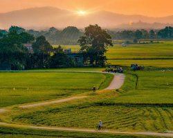 Bình Định: Làm giàu nhờ ba ba