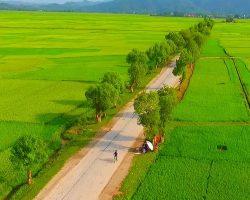 Quảng Ngãi: Một nông dân cải tiến máy tuốt lúa thông thường thành máy tuốt lúa đa năng